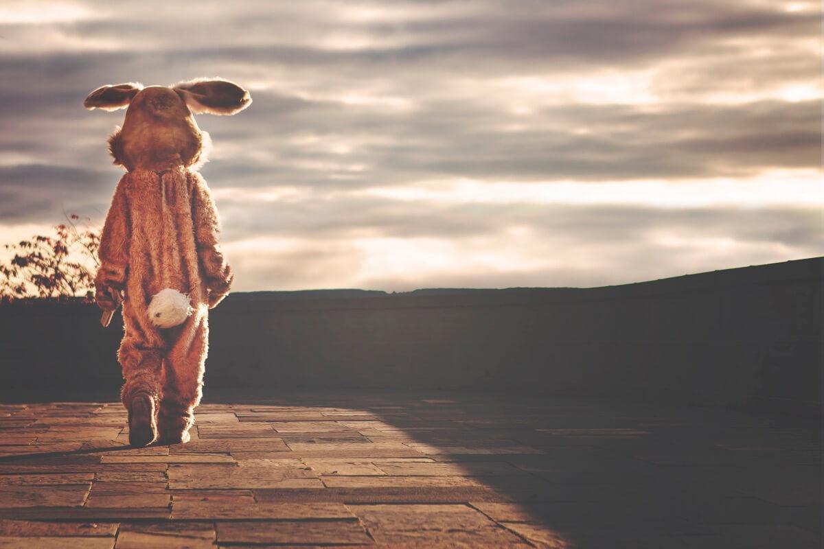 Auf einem Holzsteg bei Sonnenuntergang steht ein Mensch im Hasenkostüm
