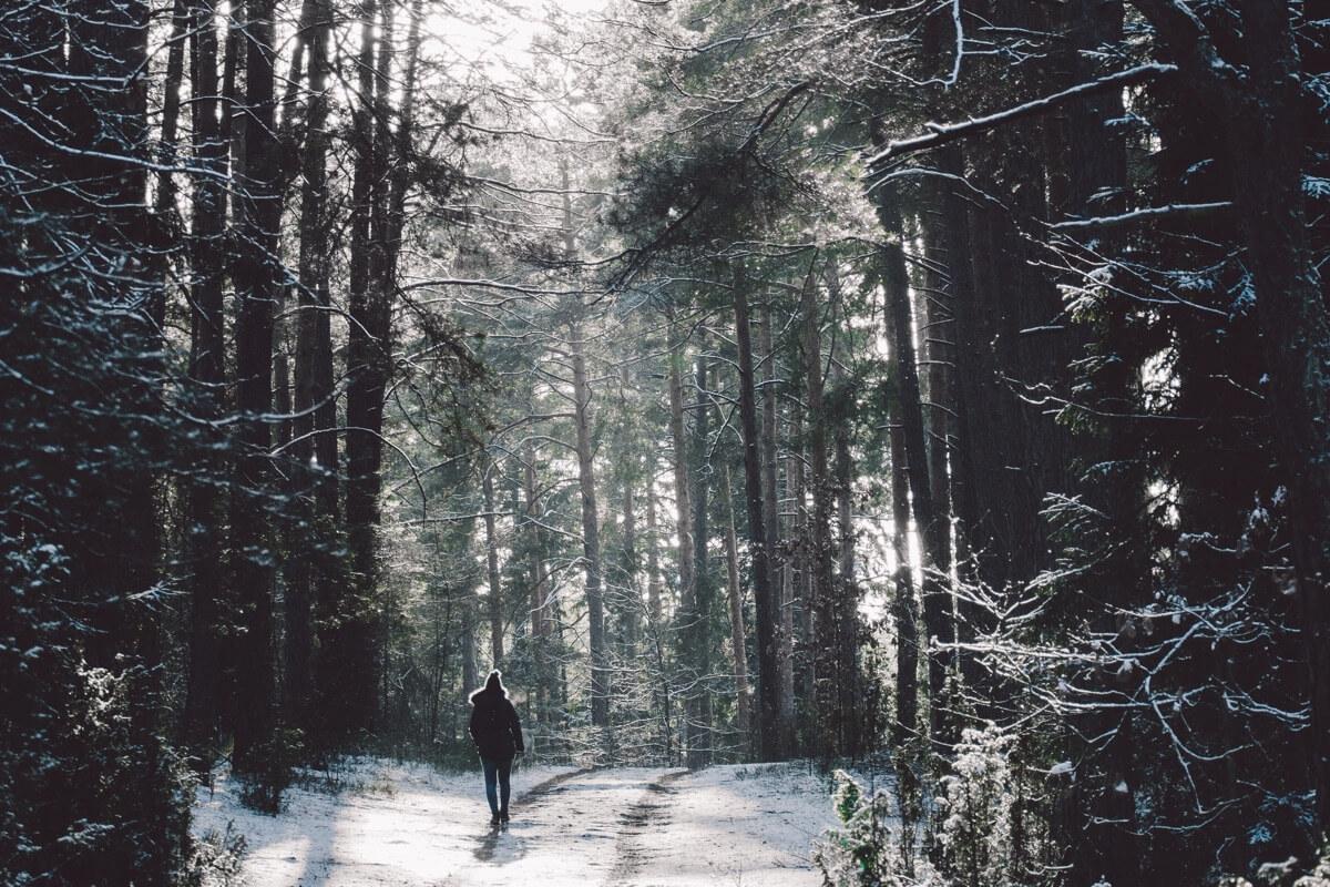 Ein Mensch geht in einem verschneiten Wald spazieren